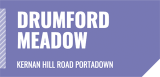 Link to Drumford Meadow Development